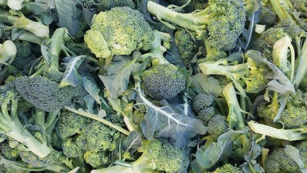 Grüner brokkoli als gesundes ernährungskonzept für frische gartenprodukte aus biologischem anbau als symbol für gesundheit. nahansicht