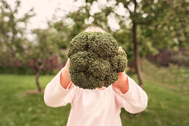Grüner brokkoli in den händen eines kindes auf dem hintergrund eines grünen gartens
