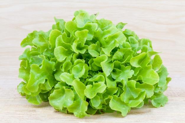 Grüner eichen-salat