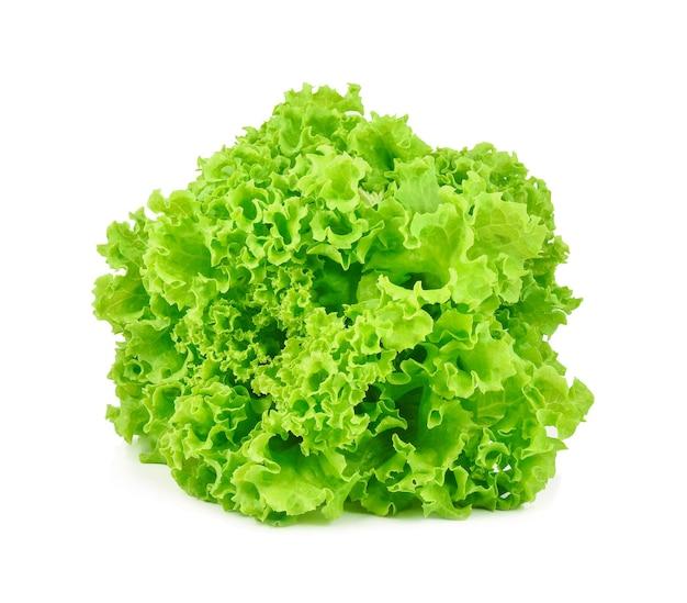 Grüner eichensalat auf weißem hintergrund