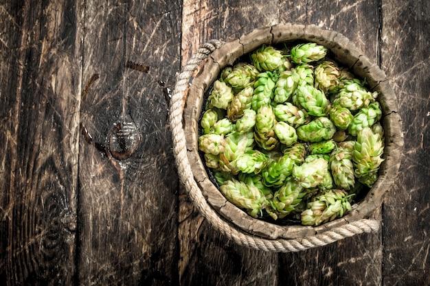 Grüner hopfen für bier in einem hölzernen eimer