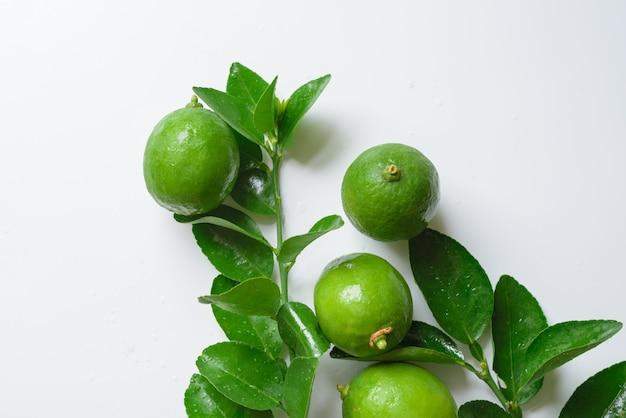 Grüner kalk auf weißem hintergrund