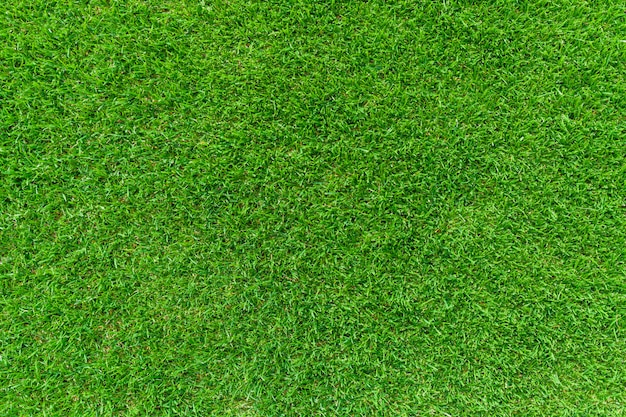 Grüner landschaftsrasenhintergrund