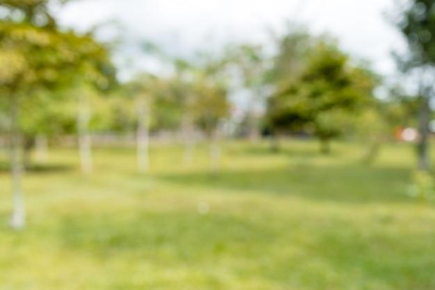 Grüner naturgrünpark mit bokeh-sonnenlichthintergrund