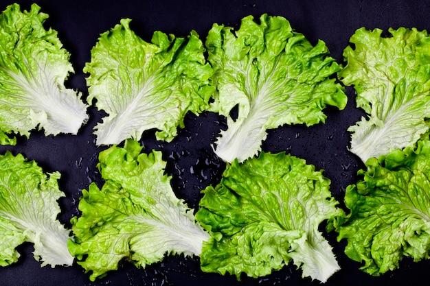Grüner organischer kopfsalatsalat verlässt auf nassem schwarzem hintergrund.