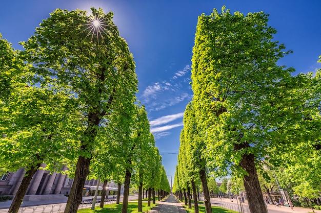 Grüner park in riga unter klarem blauem himmel