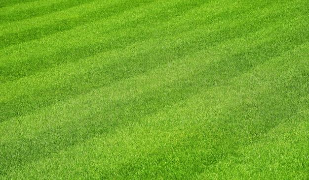 Grüner rasen des frischen grases mit streifen nach dem mähen auf fußballfeldperspektive des hohen winkels