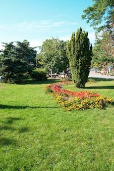 Grüner sonniger park mit blumen und bäumen