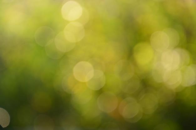Grüner unscharfer heller bokeh zusammenfassungshintergrund