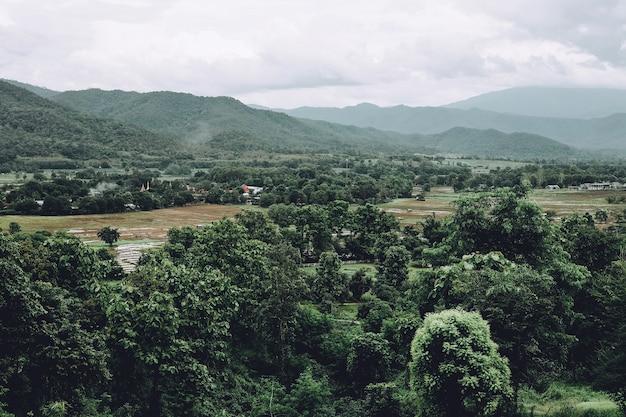 Grüner wald der frische mit dem pai und berg bei pai, mae hong son, thailand