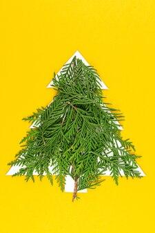 Grüner weihnachtsbaum aus nadelbaumzweigen auf pastellgelber oberfläche