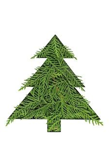 Grüner weihnachtsbaum aus nadelbaumzweigen
