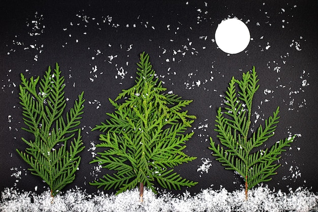 Grüner weihnachtsbaum gemacht von nadelbaumzweigen auf einem dunklen hintergrund. minimaler kompositionshintergrund. neujahrs- und weihnachtskonzept.