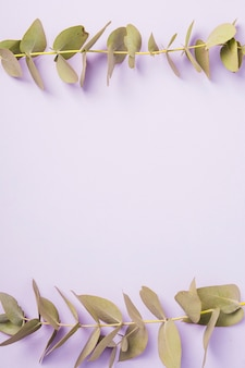 Grüner zweig grenze über lila hintergrund