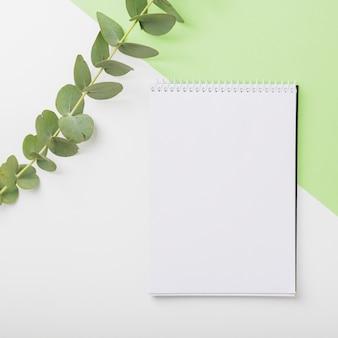 Grüner zweig mit leerem gewundenem notizbuch auf doppelhintergrund