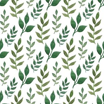Grünes aquarell nahtlose muster. kann für die verpackung und verpackungsgestaltung verwendet werden.
