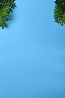 Grünes blatt auf blau