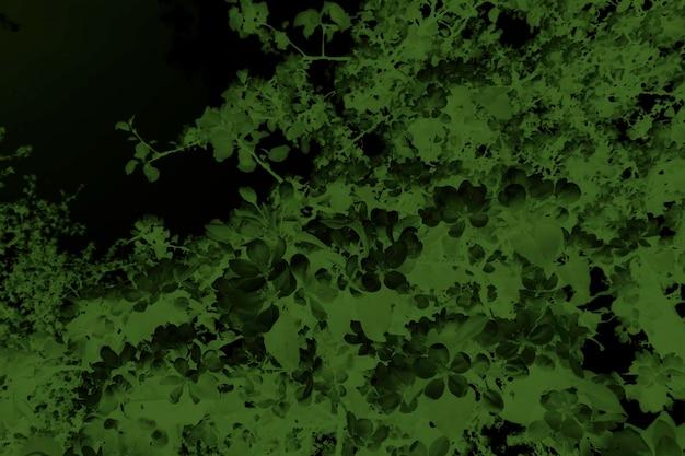 Grünes blatt textur hintergrund abstrakter hintergrund moderne hintergrundvorlage grünes blatt texturmuster dunkelgrünes laub