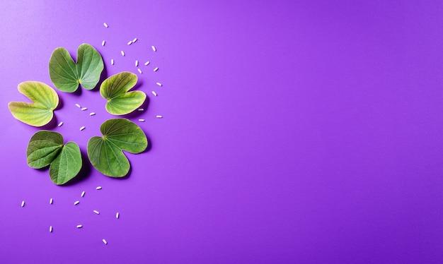 Grünes blatt und reis auf lila pastellhintergrund. dussehra indian festival konzept.
