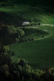 Grünes feld auf plateau. ruhige wiesen und bäume