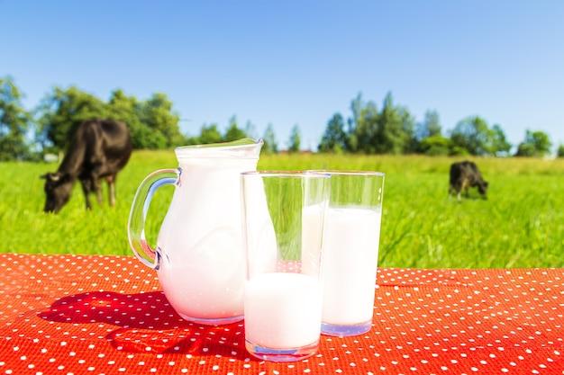 Grünes feld und blauer himmel. zwei gläser und ein krug milch. gesundes essen.