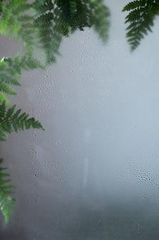Grünes freshfern hinterlässt feuchte glaszusammensetzung. kräuterhintergrund. frische, wassertropfen, tau auf glas. natürliches laub, laub. botanischer hintergrund