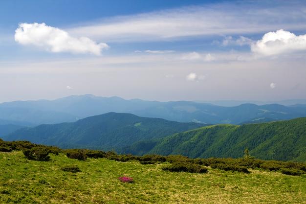 Grünes gebirgspanorama unter blauem himmel am hellen sonnigen tag. tourismus- und reisekonzept, kopierraum.