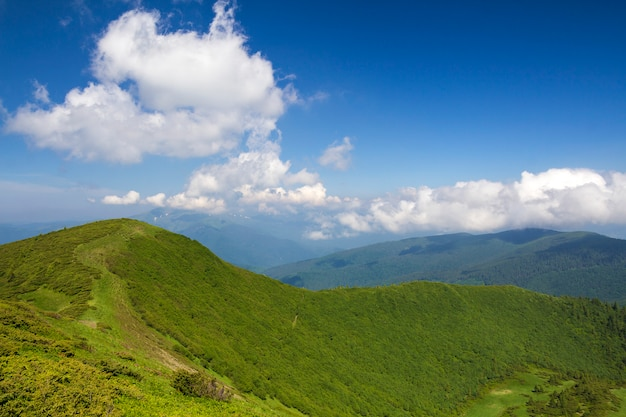 Grünes gebirgspanorama unter blauem himmel am hellen sonnigen tag. tourismus und reisendes konzept, kopienraum