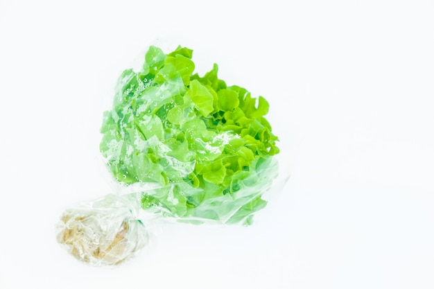 Grünes gemüse auf weißem hintergrund