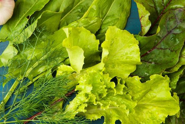 Grünes gemüse. sorrel-salat-rüben-blätter-dill. das konzept des grünen.