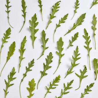 Grünes gemüsemuster von einheimischen gewachsenen natürlichen organischen frischen rucola-blättern auf einem hellgrauen tisch. draufsicht. vegetarisches gesundes lebensmittelkonzept.
