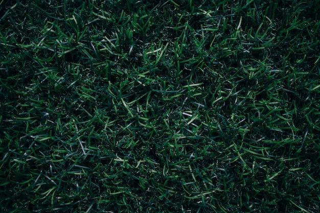 Grünes gras hintergrund rasen grasoberfläche abstrakt
