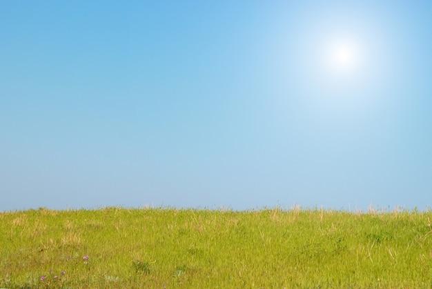 Grünes gras mit sonne und wolken des blauen himmels.