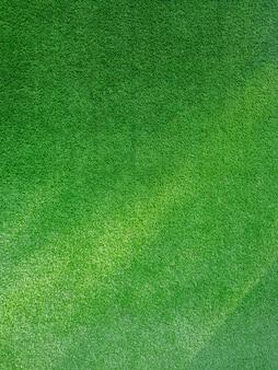 Grünes gras mit sonnenlicht. hintergrundtextur.