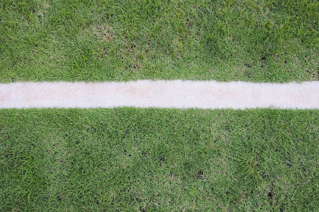Grünes gras mit weißen streifen