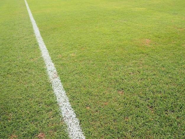 Grünes gras mit weißer linie des fußballplatzes