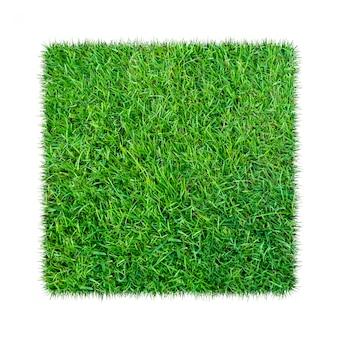 Grünes gras. natürlicher beschaffenheitshintergrund. frisches frühlingsgrüngras. isoliert auf weißem hintergrund