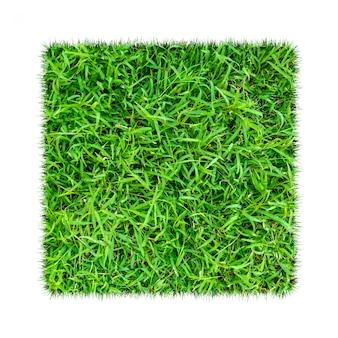 Grünes gras. natürlicher beschaffenheitshintergrund. frisches frühlingsgrüngras