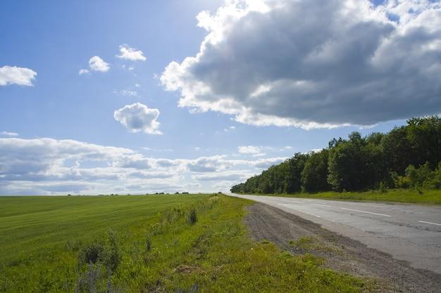 Grünes gras, straße und blauer himmel