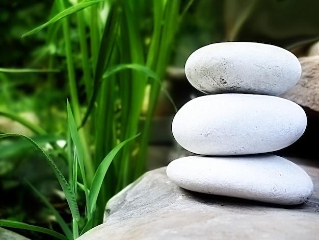 Grünes gras und weiße steine ein symbol für spa