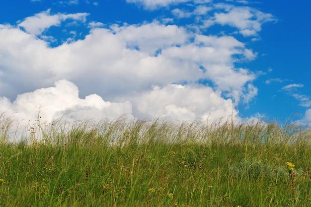 Grünes gras unter blauem himmel mit wolken. ländliche landschaft