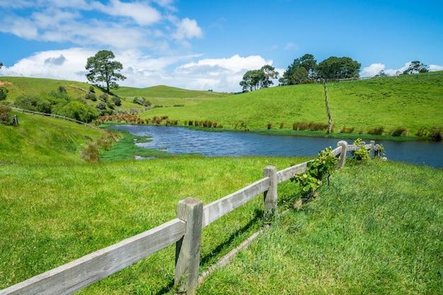 Grünes grasfeld in der landschaftslandschaft