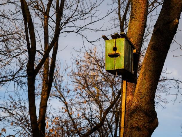 Grünes hölzernes vogelhaus auf einem baum