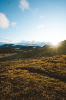 Grünes land umgeben von hohen felsigen bergen in finse, norwegen