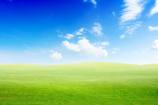 Grünes land und blauer himmel
