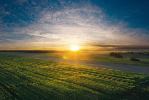 Grünes landwirtschaftliches feld bei sonnenuntergang aus der luftansicht.