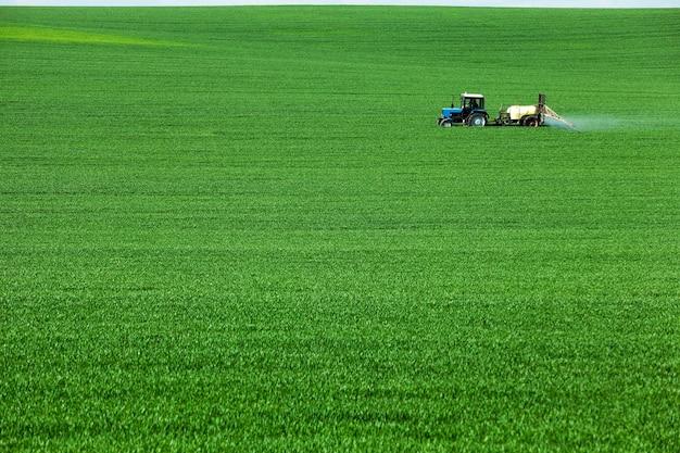Grünes landwirtschaftliches feld mit getreide, das von einem traktor verarbeitet wird
