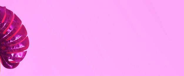 Grünes monstera-blatt auf einem rosa hintergrund. ansicht von oben, flach. banner.