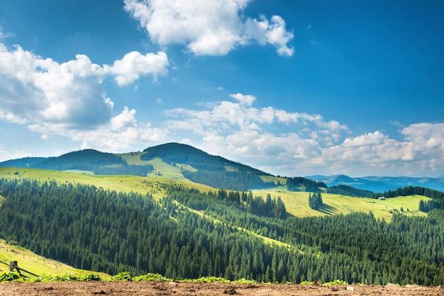 Grünes sonniges tal in bergen und hügeln. naturlandschaft