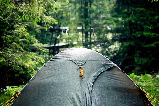 Grünes touristenzelt steht im wald touristenzelt im sommerwald